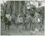 U.S. Navy African American horsemen posing in Vanuatu jungles