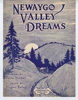 Newaygo Valley dreams
