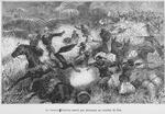 Le docteur Tautain sauvé par Alassane au combat de Dio