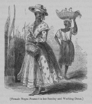 Female Negro peasant in her Sunday and working dress