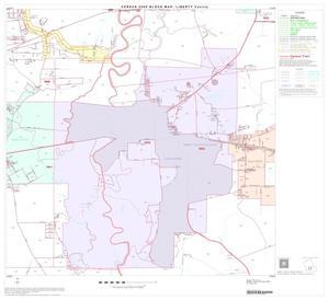 2000 Census County Block Map: Liberty County, Block 15 2000 Census County Block Map