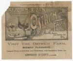 Afro-American Ostrich Farm : visit the Ostrich Farm, Midway Plaisance