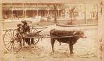 [A boy and a young man sitting on a cow-driven cart in muddy street.]