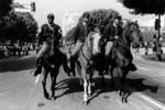 Three horsemen in parade