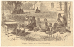 Negro cabins on a rice plantation