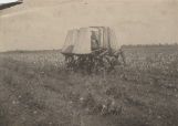 Men operating a mechanical cotton picker in a field.