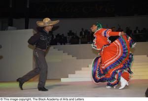 Two Unidentified Performers on Stage Dallas Arts Gala