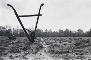 Horse-drawn Cultivator. Mississippi, 1974, from the series Southern Roads/City Pavements