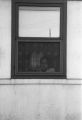 Jasper Wood Collection: Boy looking through window screen