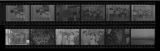 Set of negatives by Clinton Wright including Carolyn Breder's wedding, Black Coalition Demonstration at B&M Drugs, baptism at Upperroom Church, and wedding at Sands, 1971