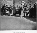 King of the Burmawa