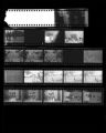 "Set of negatives by Clinton Wright including ""Donnie's"" children, and passing school children, 1964"