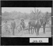 Postcard of wagon frame pulled by mules, Jenkins County, Georgia, ca. 1900