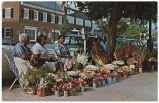 Flower Ladies of Chapel Hill
