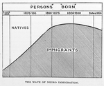 The wave of Negro immigration