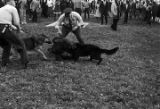 Police dogs attacking a civil rights demonstrator during a protest in Kelly Ingram Park in Birmingham, Alabama.