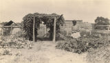 African American woman in a garden in Madison County, Alabama.