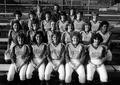 1982 softball team