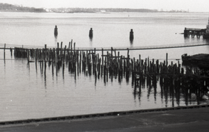 Wood pilings in the water