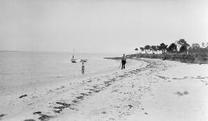 Stingray Point