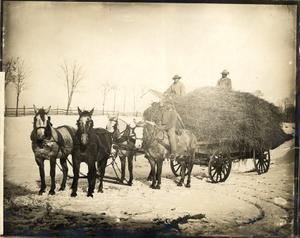 Farm hands on a hay wagon, Oak Hill, Aldie, Va., 1905-1915