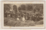Carte-de-visite view of a group of laborers at work in the field as a foreman watches them, Brazil, ca. 1865