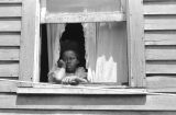 Jasper Wood Collection: Girl looking out of open window