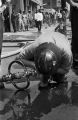 Thumbnail for Fire fighter drinking water from a hose during a civil rights demonstration in downtown Birmingham, Alabama.