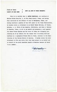 Affidavit from Mateo Camarillo