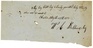 Documents pertaining to the case of The State of Texas vs. John Wahrenberger, cause no. 369, 1853