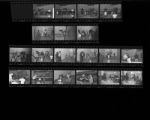 Set of negatives by Clinton Wright of boxing lessons at Chuck's gym, 1966