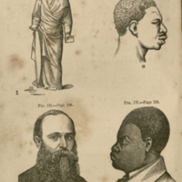 Frontispiece of Negroes and Negro slavery : the first an inferior race: the latter its normal condition by J. H. Van Evrie.