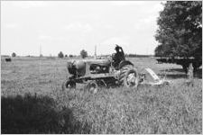 African American Man Clipping Weeds 2 [Slide Farm-14]