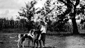 Unidentified boy playing with dogs.