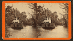 Oclawaha River, Fla. Steamer Marion