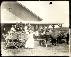 Group of people in a cart, Martha's Vineyard, Mass., ca. 1895
