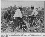 Thumbnail for Negro agent advising a farmer regarding the value of cowpeas, soy beans, and other legumes for soil improvement; During 1924, Negro framers conducted 9,860 demonstrations with cowpeas, soy beans, and other leguminous and forage crops, of which 8,358 were completed on a total acreage of 54,366