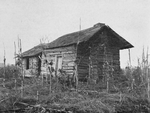 [An old cabin for Negro tenants on the Brown plantation.]
