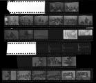 Set of negatives by Clinton Wright including drugs and narcotics clinic at Concentrated Employment Program, mountain, Hermina's party, and Jerry's Nuggett sign, 1971