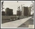 Addams Park (0262) Views - Landscapes - Construction progress photographs, 1958-07-24