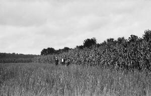 Barker boys. Demonstration corn