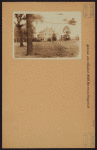 Queens: 109th Avenue - Pinegrove Street
