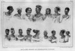 Esclaves nègres, de différentes nations