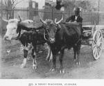 A Negro waggoner, Alabama