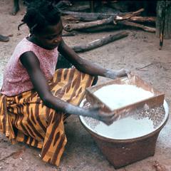 Sifting Cassava Flour with Box Sieve