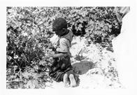 A barefoot Black boy kneels to pick cotton