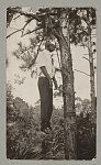 Photograph of a man lynched in Florida sometime during the latter part of February or the first of March The snapshot was taken by a travelling salesman who had the film developed at Melbourne, Alabama, and then gave a copy to a colored police officer.