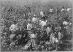 Women and children, Aiken, S.C.
