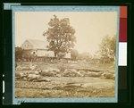 Dead horses of Bigelow's (9th Massachusetts) Battery