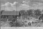 Friedensthal in St. Croix an einem Bettage, da die Taeuflinge zur Taufe in die Kirche gefuhrt werden, 1768 zu Anfang may und zu Mittage, da die Sonne uberm Scheitel stehet, aller Schatten senckrecht faellt, uber haupt wenig Schatten ist. Hinten das